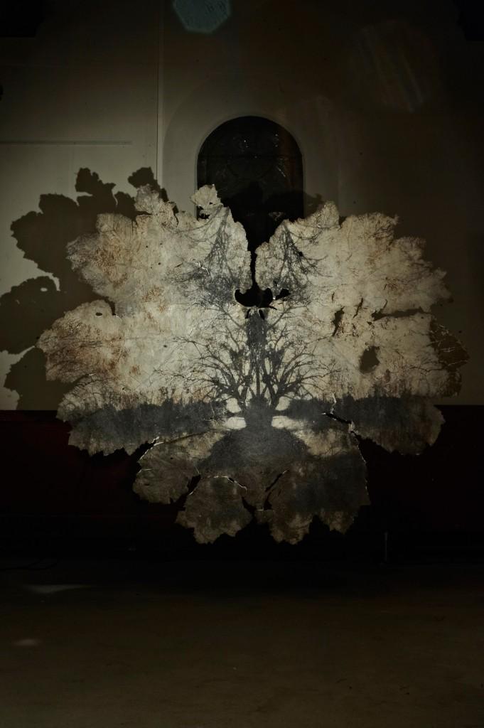 Patchamama - Silver gelatin print on Gunnerra leaf - 240cm by 230cm © Martin Baebler