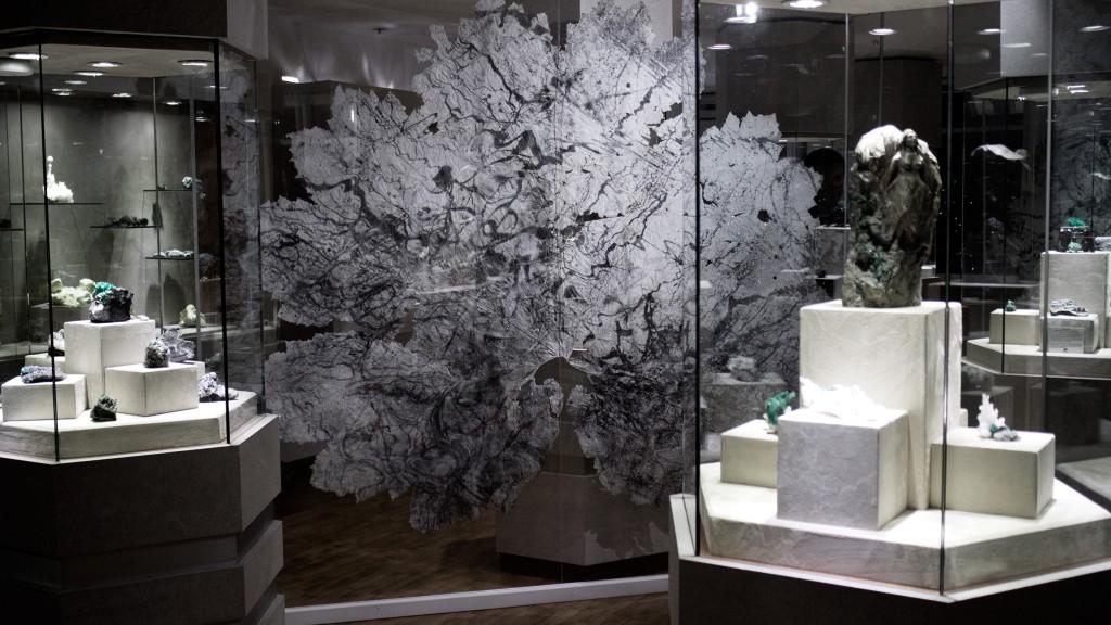 Silver gelatin print on Gunnera leaf 2017 – Framed 250cm x 240cm